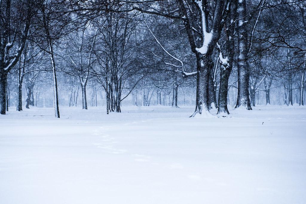 winter_spring-3