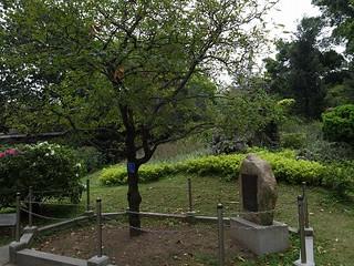 エリザベス女王植樹