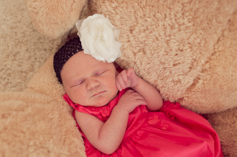 Amelia Austin Newborn Session-0010