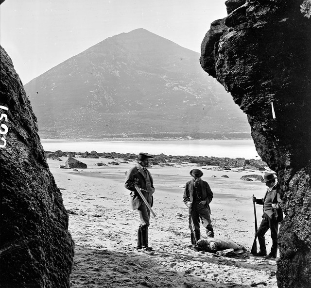 Shooting Seals on Achill Island