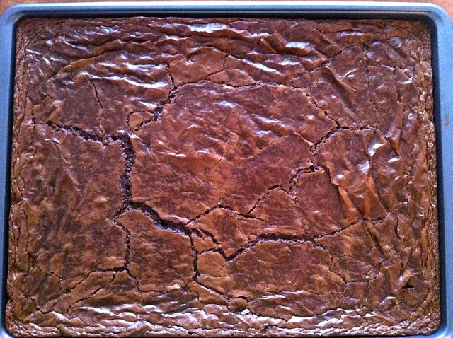 Fudge Brownies Cooling from Oven