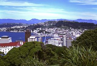 view over Lambton Harbour & Oriental Bay