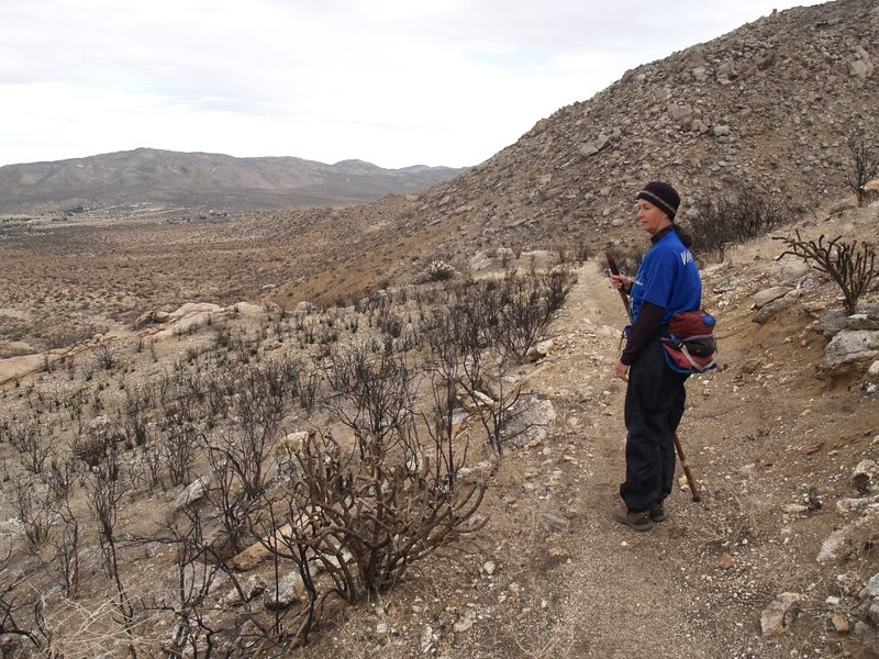 PCT - recent fire and burned chaparral on the north slope of Granite Mountain