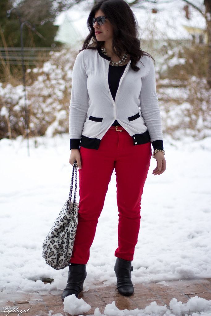 snow leopard-1.jpg