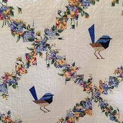 Blue wrens by Scrappy quilts