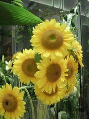 Takashimaya Times Square florist 6