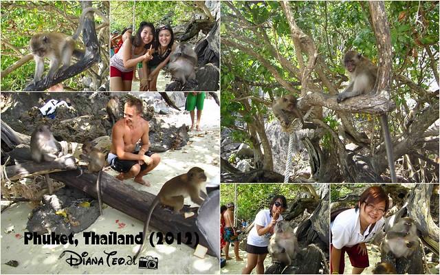 Phi Phi Island - Monkey Beach