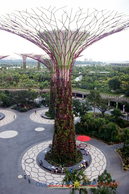 Garden By The Bay Entrance Fee gardensthe bay: singapore's iconic super trees, cloud dome