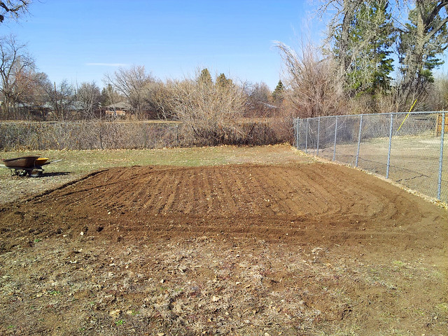 Freshly tilled