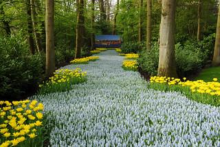 INFORMACION: Oficina de Turismo de Holanda, Tfno.: 917 498 082, www.holland.com y www.keukenhof.nl