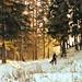 Scan-121220-0010 by Daniil Vavilov