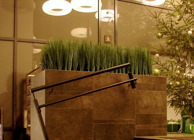 Grass column in my office while it's snowing outside by aigarsbruvelis