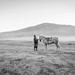 Bromo's horse rider by Nathalie Stravers