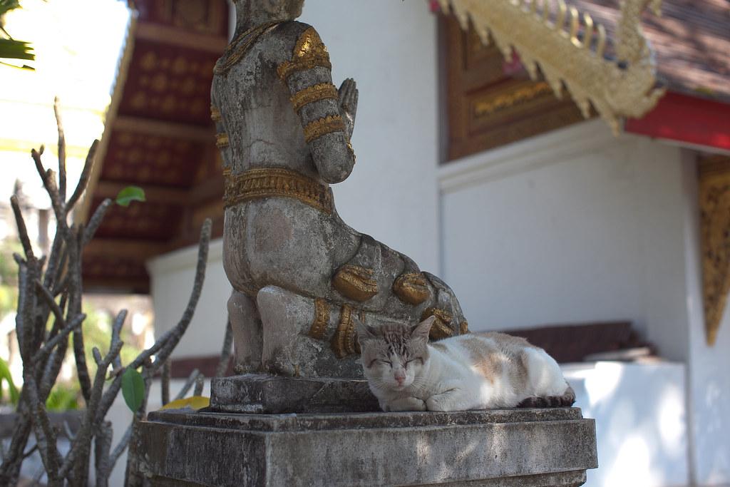 thailand-0300