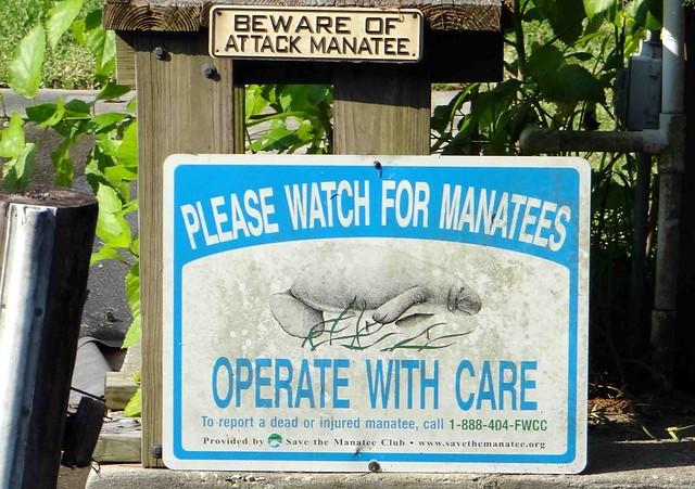 Manatee Warning sign