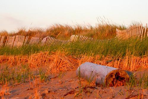 landscape dune paysage