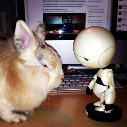Marvin dando lecciones a Lou :p