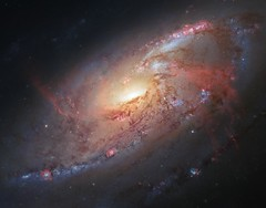 Amateur and Professional Astronomers Team Up to Create a Cosmological Masterpiece