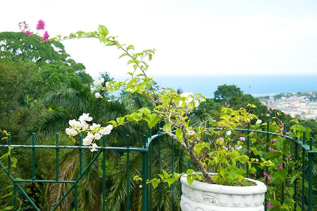 BotanicalGarden-3