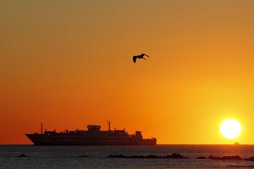 sea españa sun david sol sunrise canon mar barco ship playa andalucia amanecer cádiz franco algeciras reflejos grimaldi 70300 bahíadealgeciras 550d sangarcia dgrimaldi