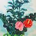 呂浩元‧火鶴,樟樹和葉子‧油彩 、畫布‧ 80x65cm‧2012