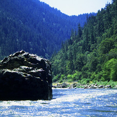 The Mighty Rogue River