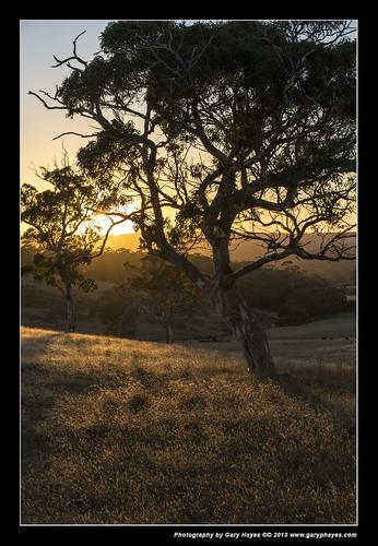 sunrise south australia vale hills mclaren adelaide kangarillo