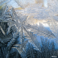 the world 39 s best photos of icecrystals and windows