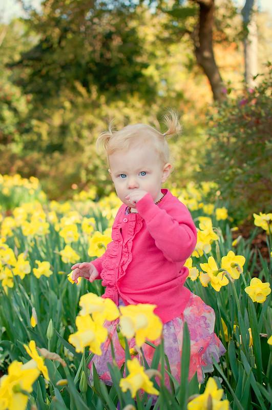 Abigail Ariston Tulip-11-1web
