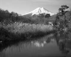 Mt. Fuji by 8x10 (img810-007-010)