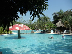 lagoon(0.0), sea(0.0), tropics(1.0), resort town(1.0), swimming pool(1.0), leisure(1.0), estate(1.0), vacation(1.0), resort(1.0), water park(1.0),