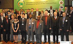 在華盛頓公約會議附帶會議中,全球野生動物執法官員2013年3月7日首次齊聚一堂(照片提供:CITES)
