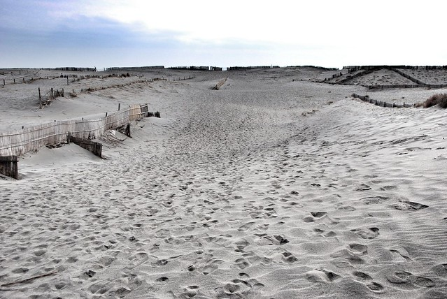 sand_hill_10