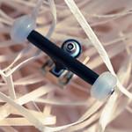 Rool Wheels - White Transparent