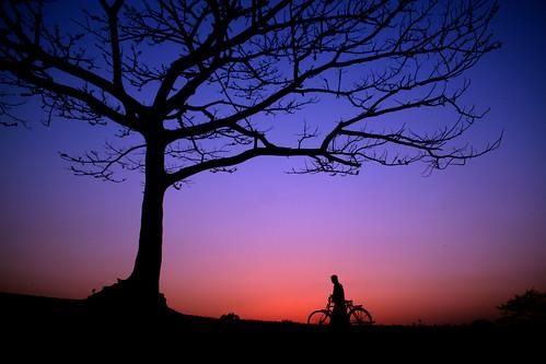 Bangladesh Nature