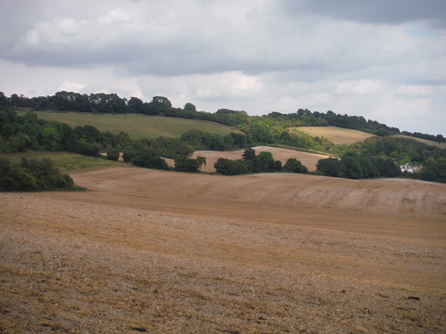 Pilgrim House and North Downs