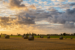 Hay Rolls at Sunset