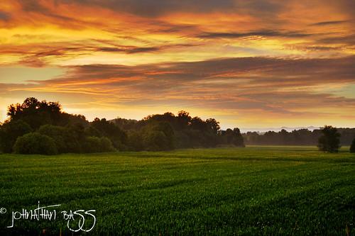 trees sunset sky field fog clouds landscape nikon d70s foggy