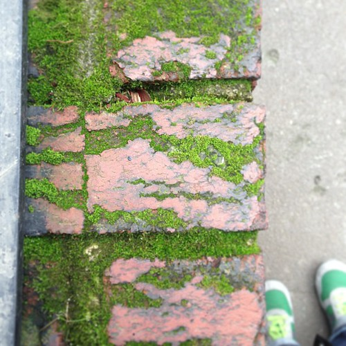 Moss. And feet. #nofilter