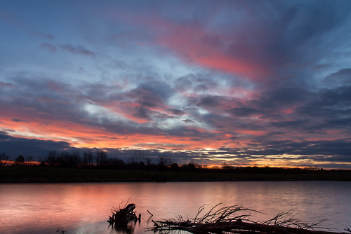 longexposure flowers trees winter nature water field clouds canon landscape outdoors morninglight pond stream january overcast 7d orangesky cloudysky buschwildlife canon7d canon1585mmlens