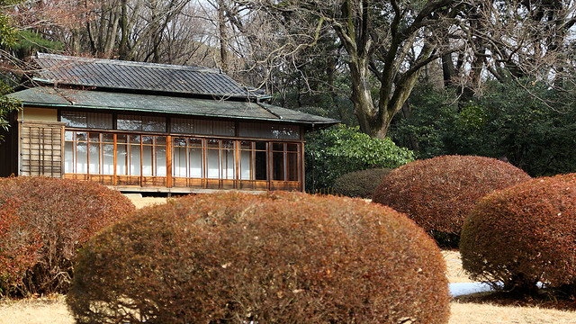 24/365 Meiji Jingu Garden