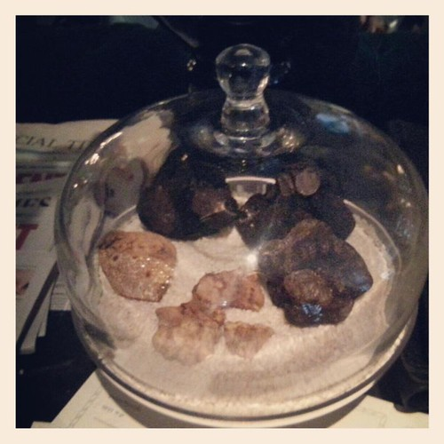 black white truffles riding Hosue cafe