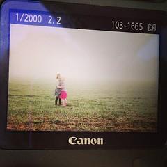 Foggy morning photo op? Yes. @lilydenver #sawyergrace #lilybleu