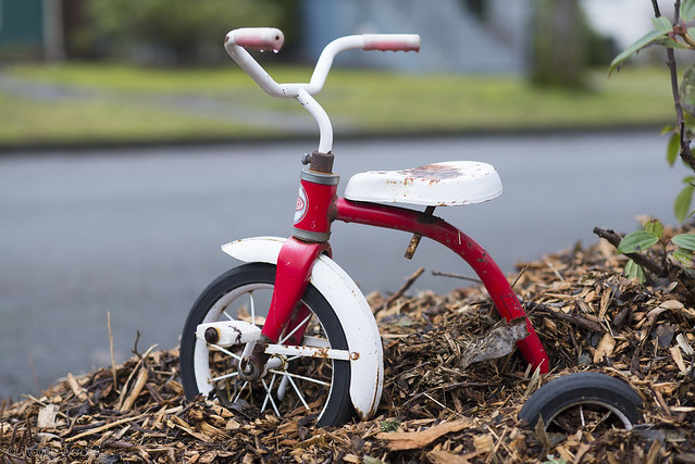 Classic Trike