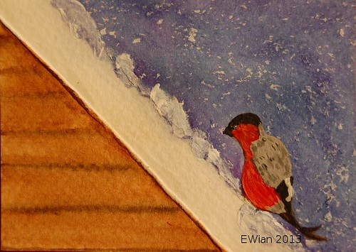 30-365 ATC 2013 bullfinch on the roof