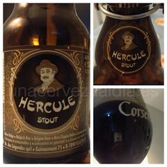 Ellezelloise Hercule Stout details