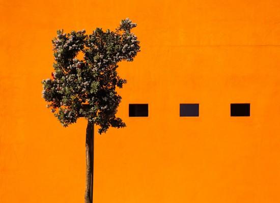 Fotografia em Palavras: Minimalismo