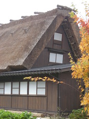 Thatched roofing - style of gassho-house