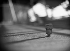 Danbo And The Long Walk Home
