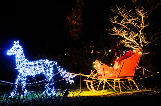 Lewis ginter gardenfest of lights flickr photo sharing for Lewis ginter botanical gardens christmas